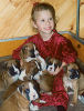 <h5>Charlotte with 7 boxer babies<br>Ch Sjecoin Dipped in Gold in her lap